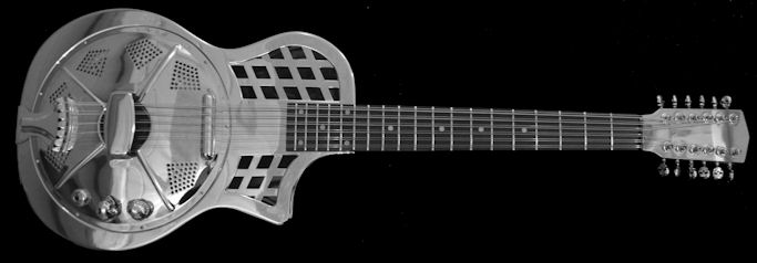 12 String Slideguitar
